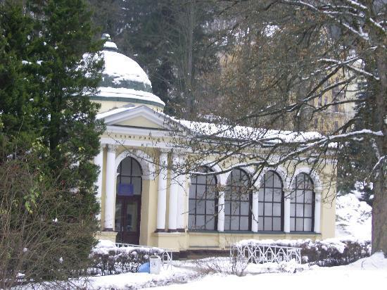 Spa Hotel Reitenberger: historische Gebäude