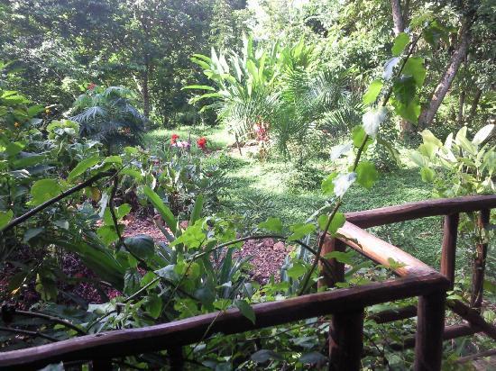 Lagoon Resort: Lush gardens surrounding the bungalows