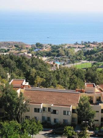 Pepperdine University : The view of the Pacific Ocean from Pepperdine.