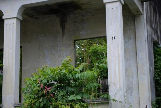 "Caguas, Porto Rico: Giving new meaning to the term ""cement jungle""!"