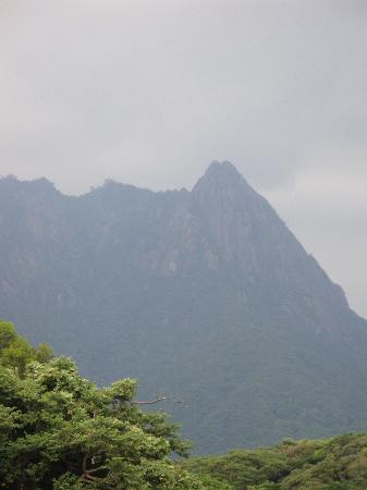 Mt. Mocchomudake : 外周道路から眺めるモッチョム岳
