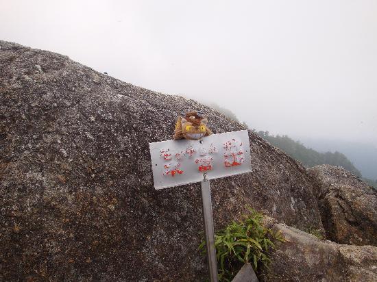 Mt. Mocchomudake : モッチョム岳頂上