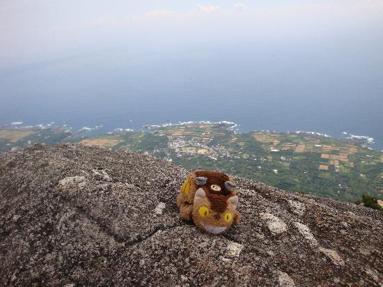 Mt. Mocchomudake : モッチョム岳頂上からの景色
