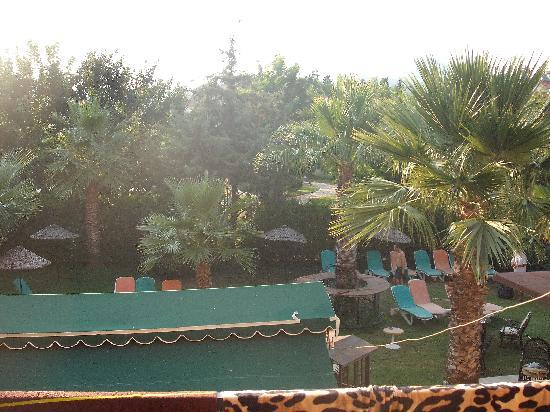 Esmeralda Apartments: the pool area