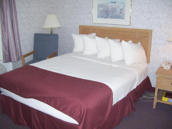 Best Western Syracuse Airport Inn: bed