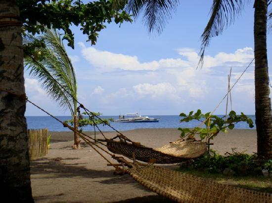 Camiguin Action Geckos Dive & Adventure Resort: Hammocks on the Beach