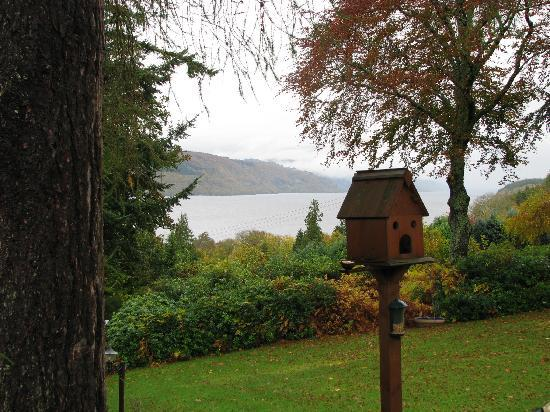 Foyers Bay Country House: View of Loch Ness from B&B front yard