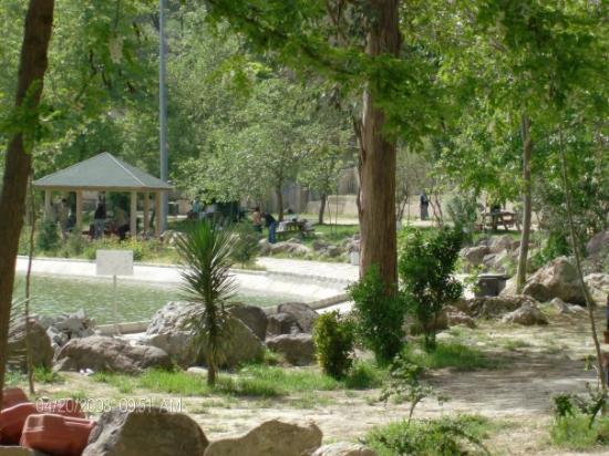 manisa akpınar piknik