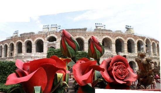 Verona, Italia: Roses at the Arena