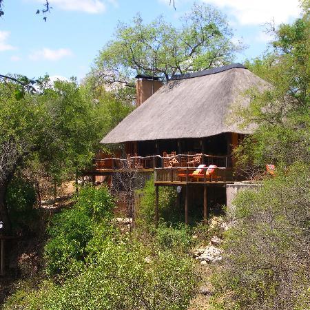 Garonga Safari Camp: View of the main public area