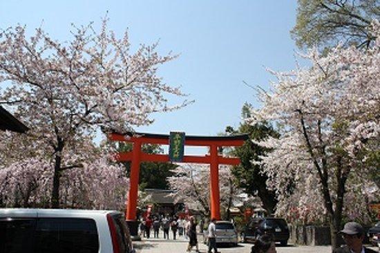 Hirano Shrine: 平野神社1