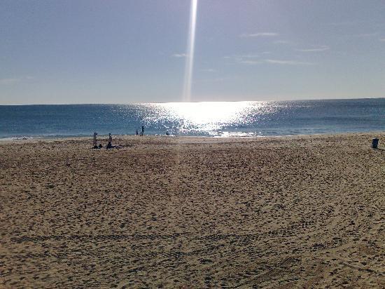 Auramar Beach Resort: beach