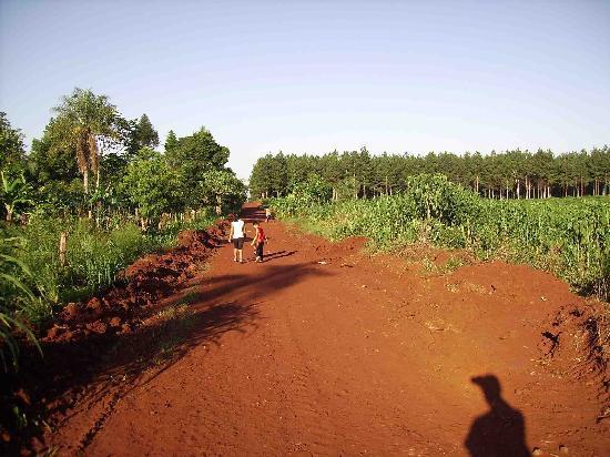 Eldorado, Argentina: Camino a la Virgen