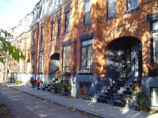 CozyToronto: A quiet street in a very pleasant block