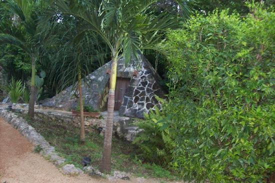 La Selva Mariposa: Steam Hut
