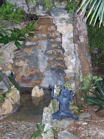 La Selva Mariposa: One of the waterfalls