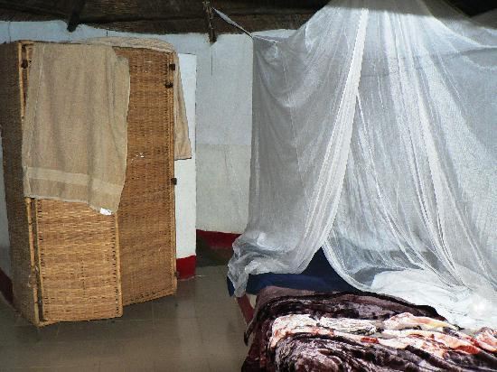 Bird Safari Camp: inside the hut