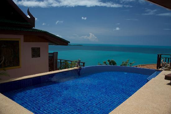Sandalwood Luxury Villas : Jumpee Plunge Pool
