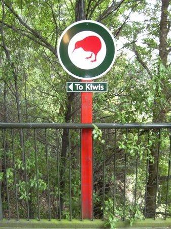 Kiwi Birdlife Park: Kiwi Birdlife Centre