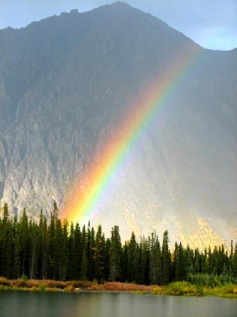 Adventure Denali: Rainbow over the lake
