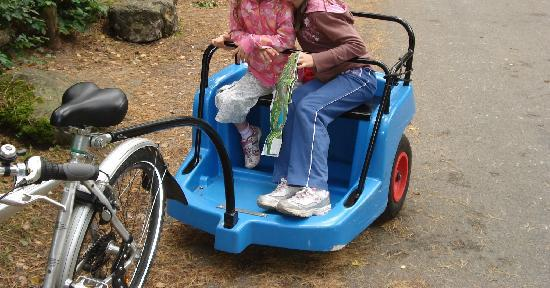 Center Parcs Bispinger Heide: You can ferry your children round in a trailer - note the high tech bungy cord to keep them in!