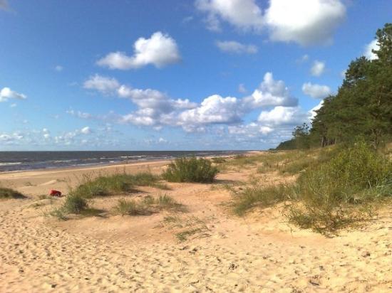 Saulkrasti, ลัตเวีย: Latvian beach
