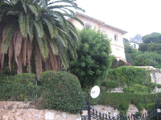 Beaulieu-sur-Mer, Frankrig: végétation luxuriante