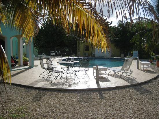 Coral Paradise Resort : Swimming pool