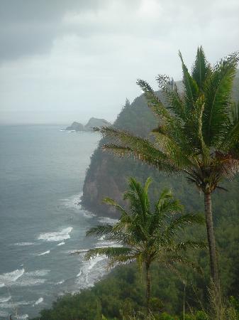 Breathtaking ocean vistas