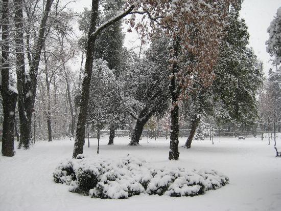 Montebelluna, Italia: Parci Manin 20/12/09