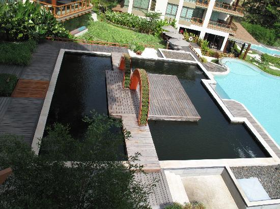 ShaSa Resort & Residences, Koh Samui: Fish pool