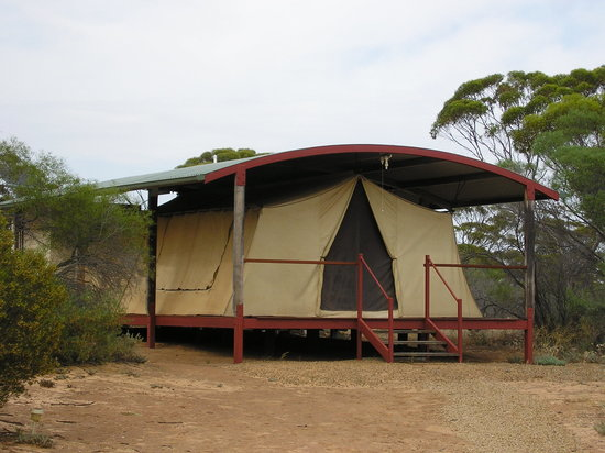 Gawler Australia  city photo : Gawler Ranges Wilderness Safari Day Tour Wudinna, Australia : Top ...