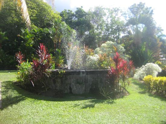 St. Kitts Captain Sunshine Tours: The Jefferson Estate