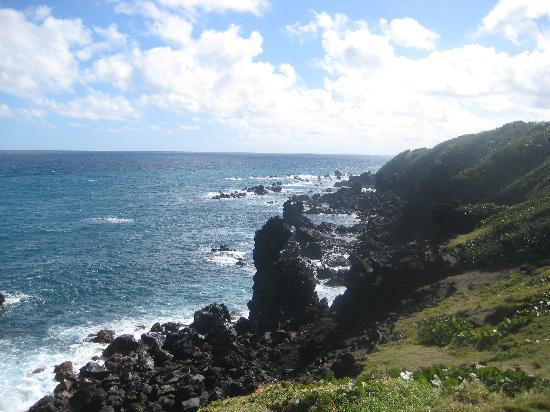 St. Kitts Captain Sunshine Tours: Black Rocks