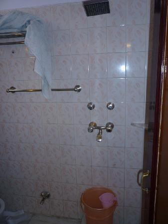 Hotel Pearl Palace: Hot shower permanently but at same level as sink & WC.