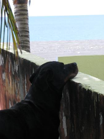Monterrico, جواتيمالا: para la playa