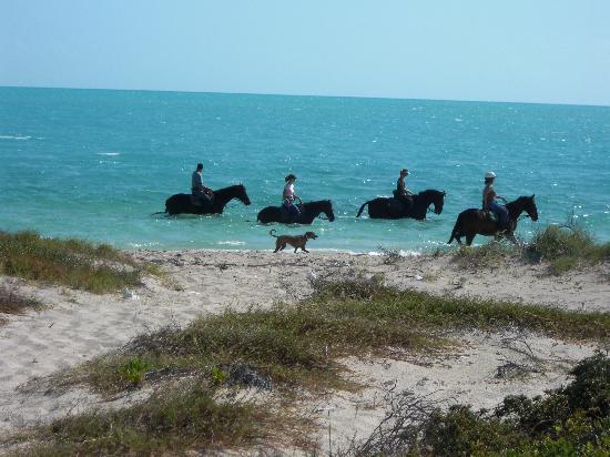 Royal West Indies Resort: Long Bay Beach