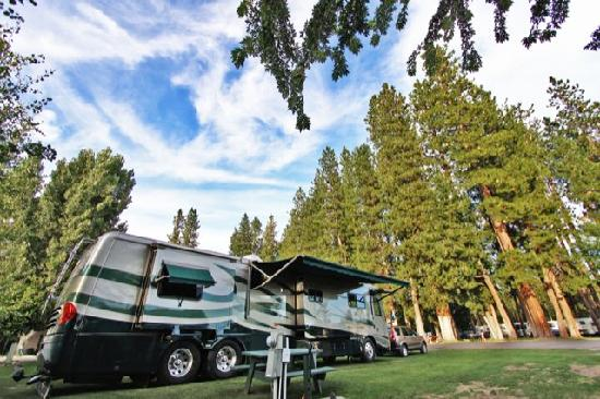 McCloud Dance Country RV Resort : Big Rig sites