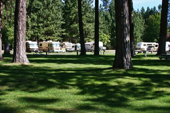 McCloud Dance Country RV Resort: Park-like grounds