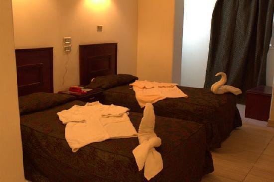 Photo of Nubanile Hotel Aswan