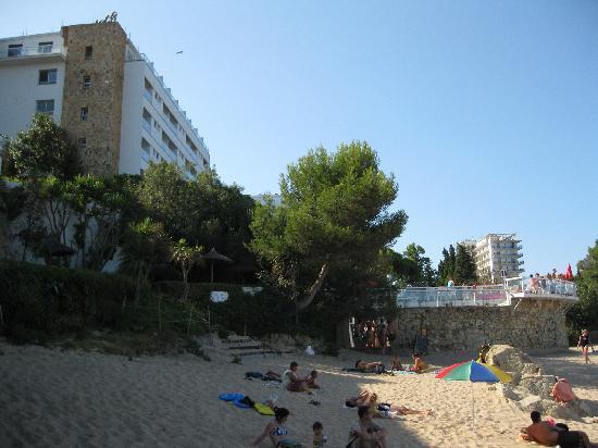 H TOP Caleta Palace: Hotelrückseite