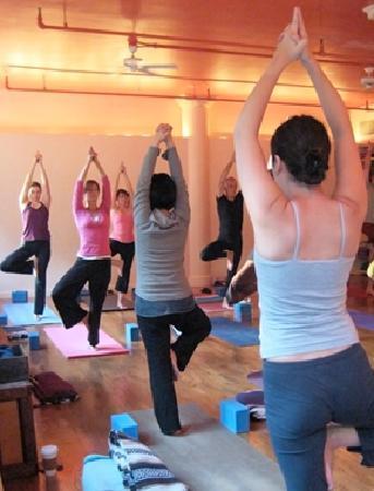 Om Yoga Tree Pose Picture Of Om Yoga Center New York City Tripadvisor