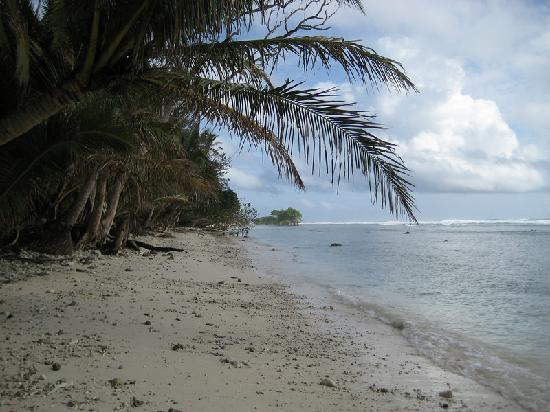 Kosrae Village Ecolodge & Dive Resort: Kosrae beach