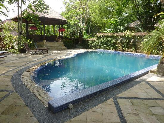 Ubud Garden Villa: private pool and gazebo