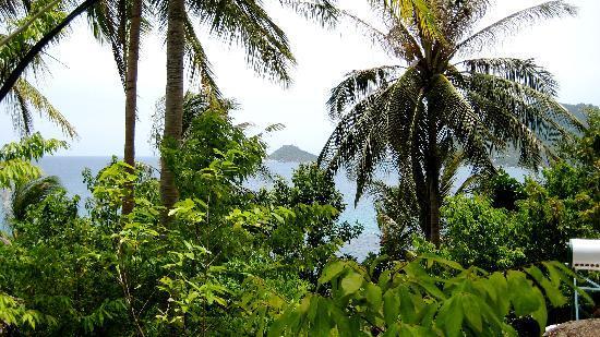 Charm Churee Villa: view near our room