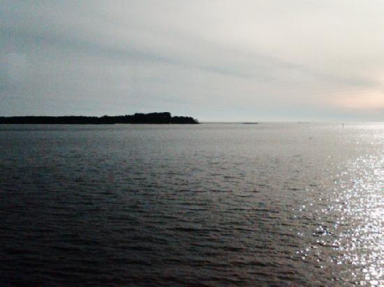 The Rusty Rim Pub: This is the view from the Rusty Rim of the Gulf of Mexico from my phone camera