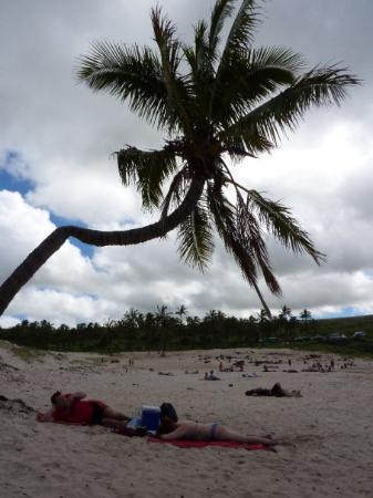 Anakena Beach: Ni idea quienes eran... pero nos ganaron la palmera para la foto