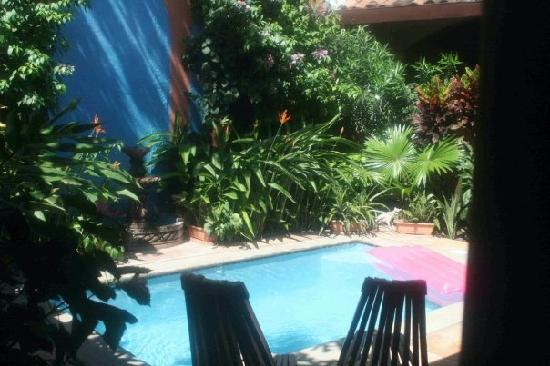 Casa Silas B & B: The Casa Silas pool