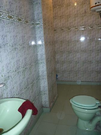 Hotel Preet Palace: very clean bathroom