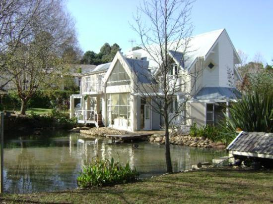 Somerset West, South Africa: Winters day on the pond, the trout and the bass are still rising